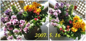 20070516141457.jpg