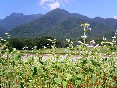 2007.夏の旅in山梨  (4)