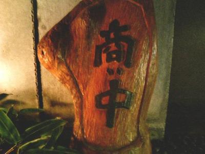 8.銀杏 (10)