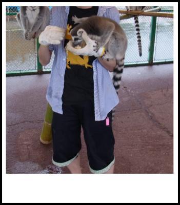 移動動物園4