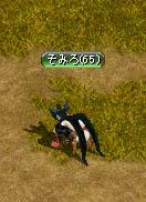 thief001.jpg