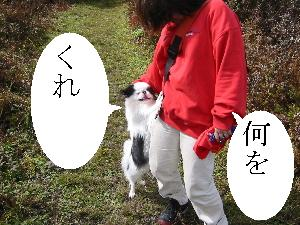 20070530150240.jpg
