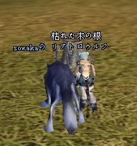 20070328002406.jpg