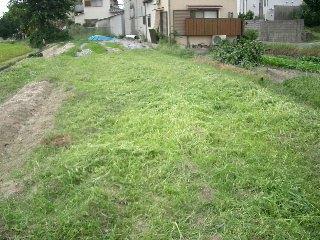 とりあえず草刈りをして…
