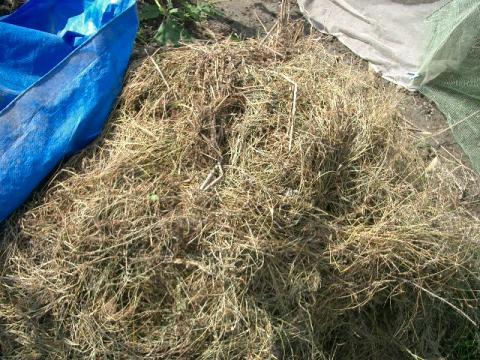 堆肥 カバーあり
