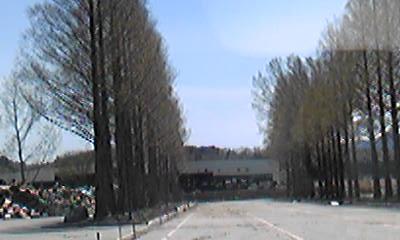akamae04