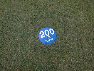 yard200_002.jpg