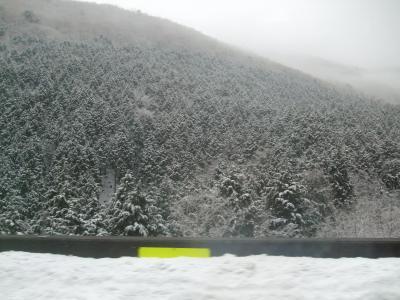 雪は有るけど春近し!