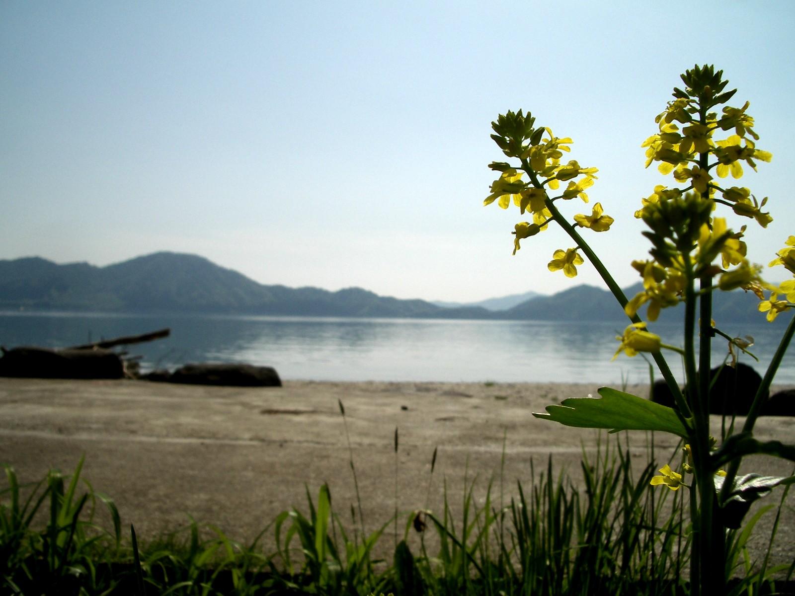 気持ちのよい田沢湖