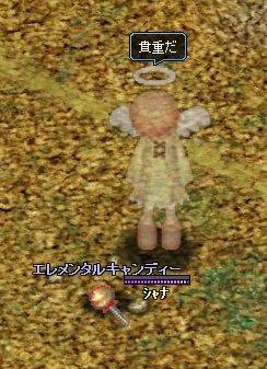 20060907214601.jpg