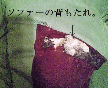 破壊されたソファー。