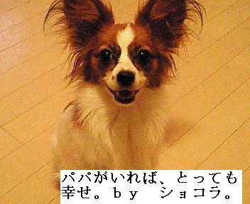 20070304113128.jpg