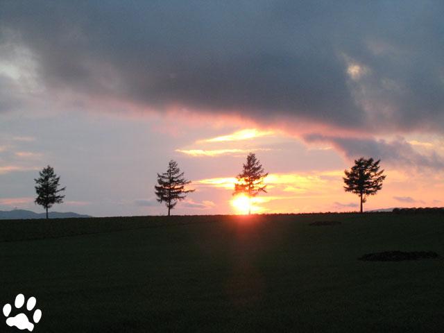 夕陽のメルヘンの丘