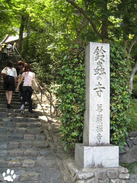 京都嵐山鈴虫寺
