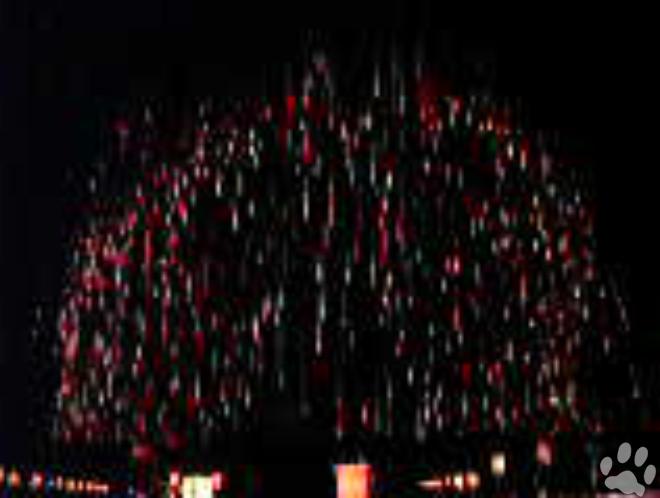 大玉の花火 世界一の4尺玉