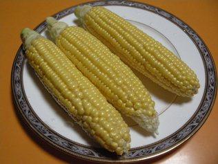 2011.8.4 トウモロコシ 生