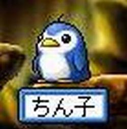 20070404211340.jpg