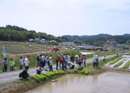 kashidanotaue1.jpg