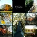 autumn_2007