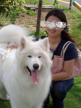 犬友と共に3
