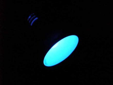 200606202.jpg