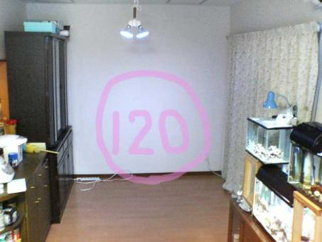 20061020120.jpg