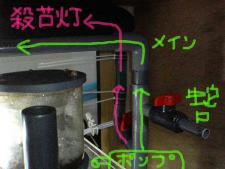 20061025rokaso1.jpg