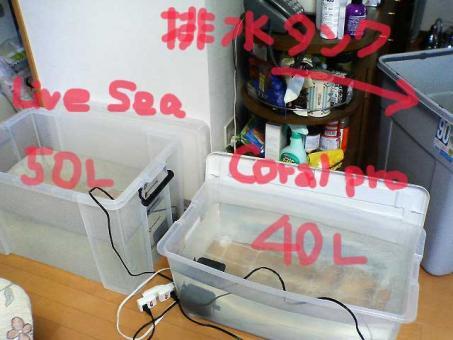 200611052kaisui1.jpg