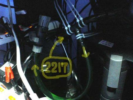 20061112doren.jpg