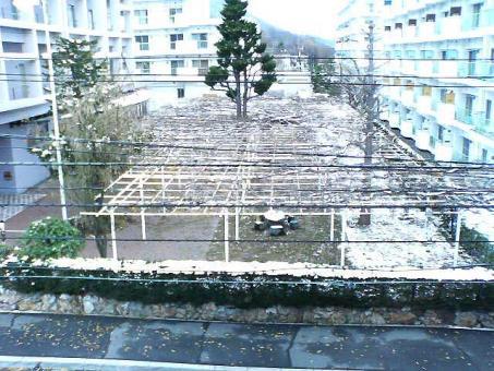 20061123yuki.jpg