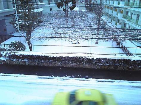 20070313yuki.jpg