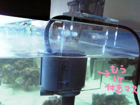 20070514para.jpg