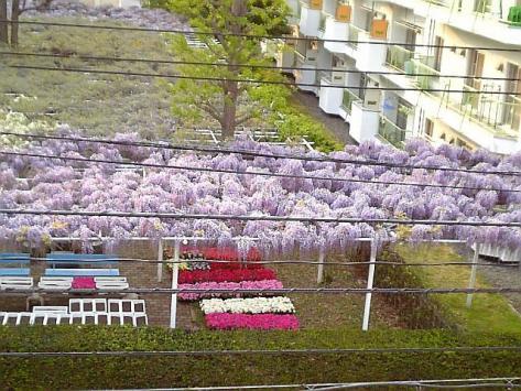 20070530fuji2.jpg