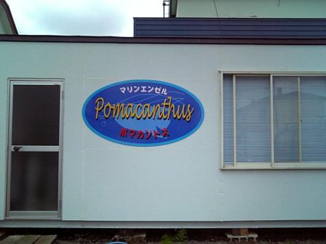 20070805poma.jpg