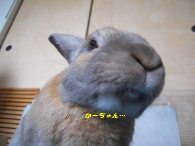 032_20110701101039.jpg