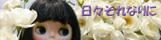 https://blog-imgs-11-origin.fc2.com/t/a/t/tatsukooo/blythe.banner01.jpg