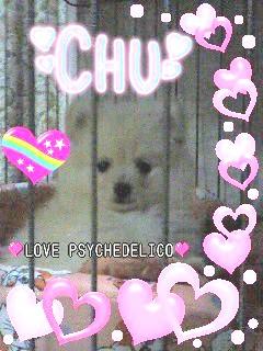 LOVE CHU~☆