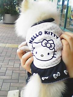 キティ服のLOVE