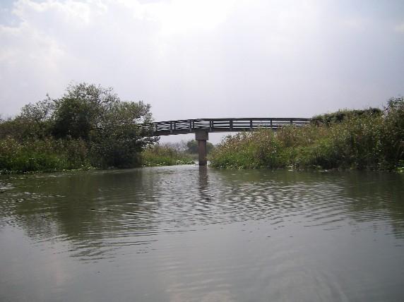 水郷めぐり ある橋をバックに、、、
