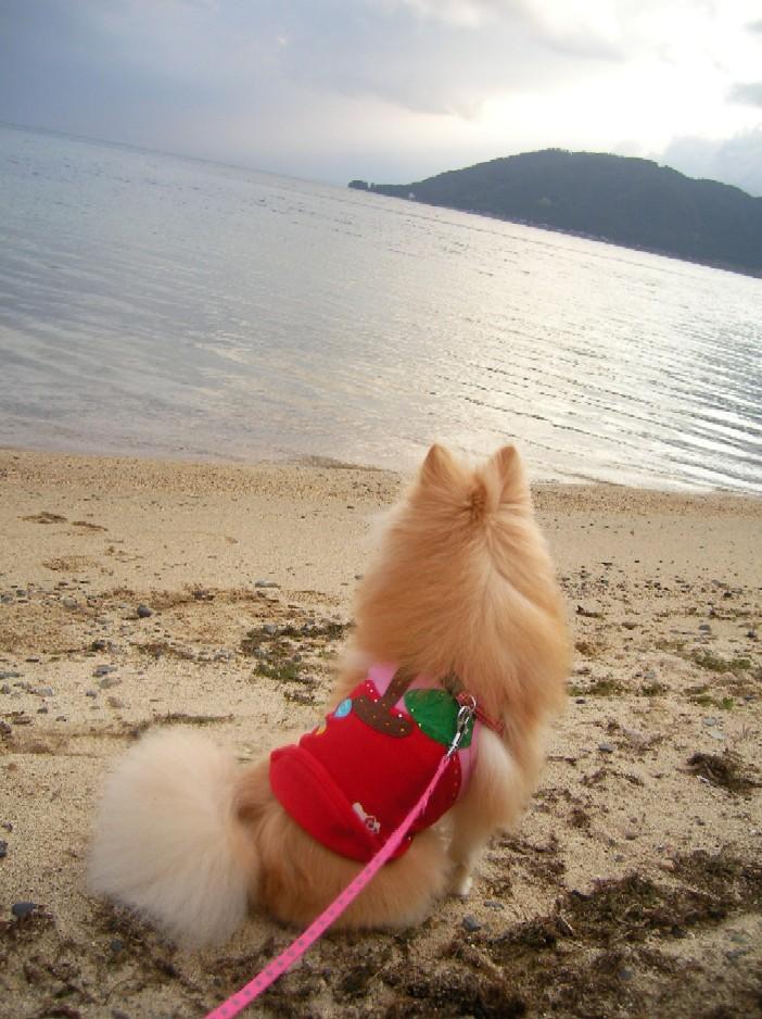 琵琶湖を 眺めるLOVEちゃん