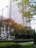 晩秋の都庁