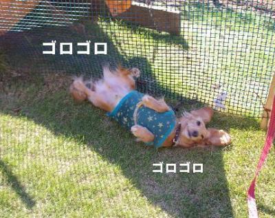 1024-2.jpg