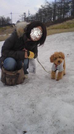 雪の上で記念撮影