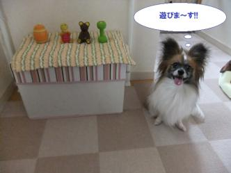 01-02_20110602131430.jpg