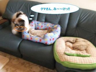01-05_20110602131432.jpg