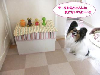 01-14_20110604113650.jpg