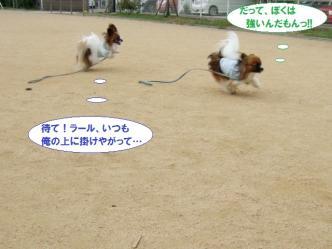 04-12_20110704115056.jpg
