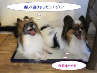 06-04_20110806195057.jpg