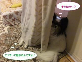 13-08_20110612232408.jpg