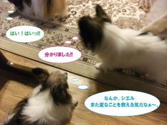 13-10_20110612232406.jpg